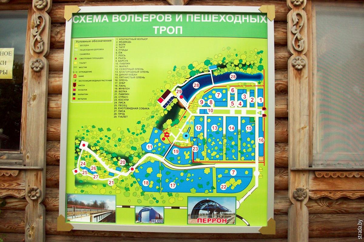 Зоосад, Буйничи, Могилёвский район, Могилевская область