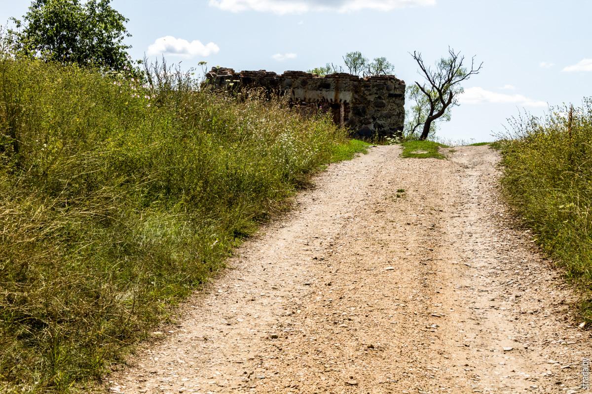 Замчище, Свислочь, Осиповичский район, Могилевская область
