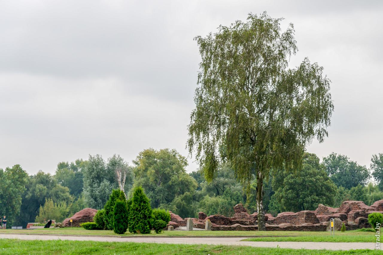 Руины Белого дворца, Брест, Брестский район, Брестская область