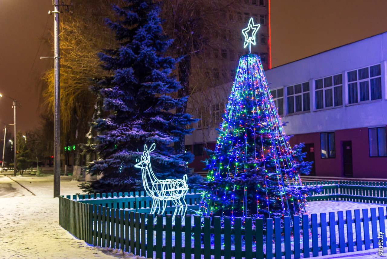 Новый Год, Бобруйск, Бобруйский район, Могилевская область