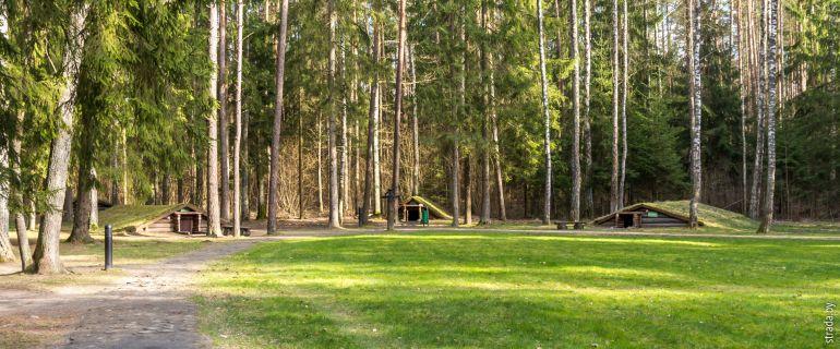 Партизанский лагерь и дуб желаний в Станьково